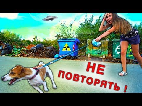 Мной управляет Собака Джина выгуливает меня Играем Крит | Elli Di Pets