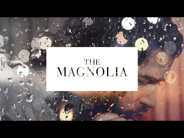 The Magnolia - Little White Dove