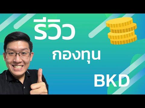 รีวิวกองทุน BKD บัวแก้วปันผล รวมหุ้นไทยพื้นฐานดีปันผลเด่น ผลตอบแทน 10% ต่อปี