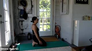 Beginner/Intermediate Yoga - Session 15