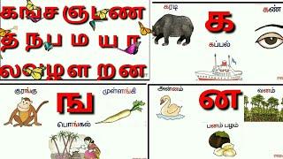 உயிர் மெய் எழத்துக்கள்/Tamil Alphabets,Uyir Mei ezhuth ka varisai/க ங ச,, |ka varisai sorkkal/prinit