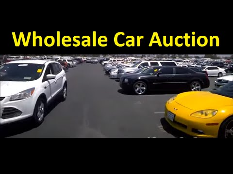 Wholesale Car Auction Cars Trucks SUV Video Preview Buy Sell
