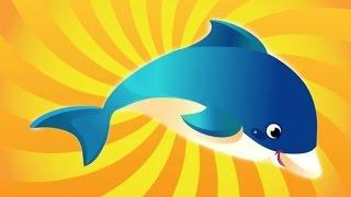 Видео для детей. Шоу дельфинов. Поездка в дельфинарий. Танцы дельфинов.SeaWorld .Dolphin Show.