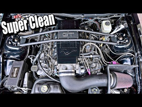 How To CLEAN Your Mustang ENGINE BAY
