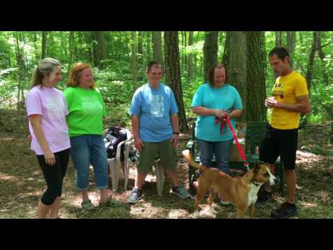 Baywater Animal Rescue and 2 Traveling Dogs, Cambridge, Maryland