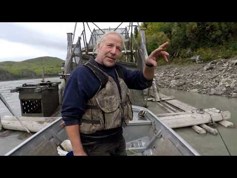 Pulling a Fish Wheel Out of the Yukon River - Stan Zuray