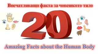 20  Amazing Facts about the Human Body/20 Впечатляващи факта за човешкото тяло