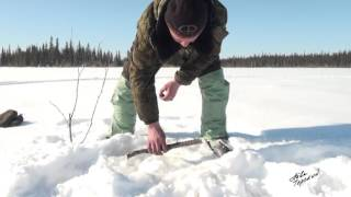 Как ловить щуку на капкан - зимняя рыбалка видео