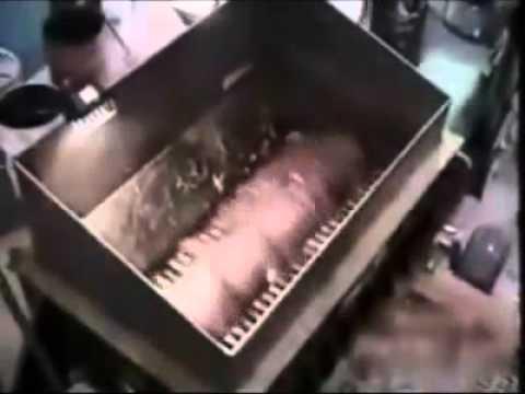 Колбоса и сосиска завод