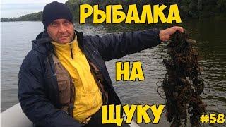 Рыбалка Ловля щуки осенью Опасности рыбалки