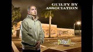 Guilty By Association - PITBULL
