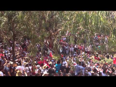 Crowds at Jellez cemetery. Credit: Alexandra Hartmann, Tunisia Live.