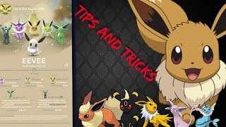 Eevee community day ( Tips And Tricks )