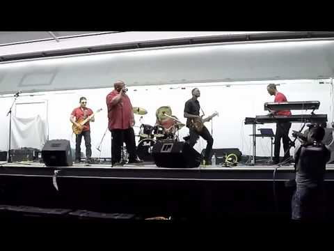 Mustang Sally (Cover) The Elements of Funk