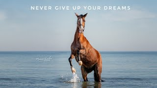 Never give up your dreams [Equestrian Music | Para Dressage]