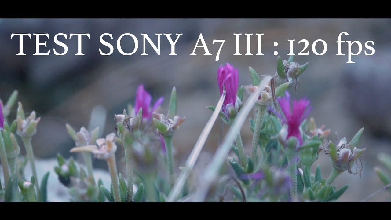 Sony A7 III : Test du mode 120 fps