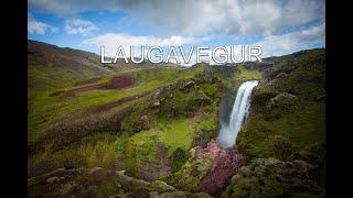 Vandretur Laugavegur Island