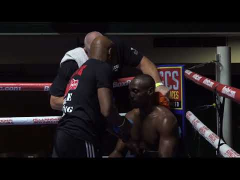 Andre Sterling vs Remigijus Ziausys
