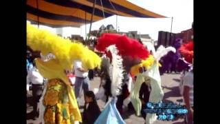 Carnaval Tenancingo Tlaxcala 2013 (2 seccion)