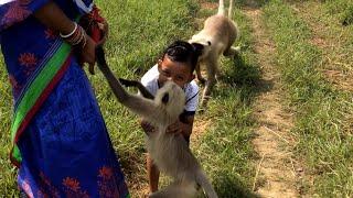 कल्पना की बात है कि ऐसा प्यार मनुष्य और जानवरों के बीच होता हैSuch love exists between human&animals