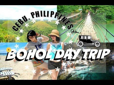 ✈ Day Trip (Bohol Island, Philippines)