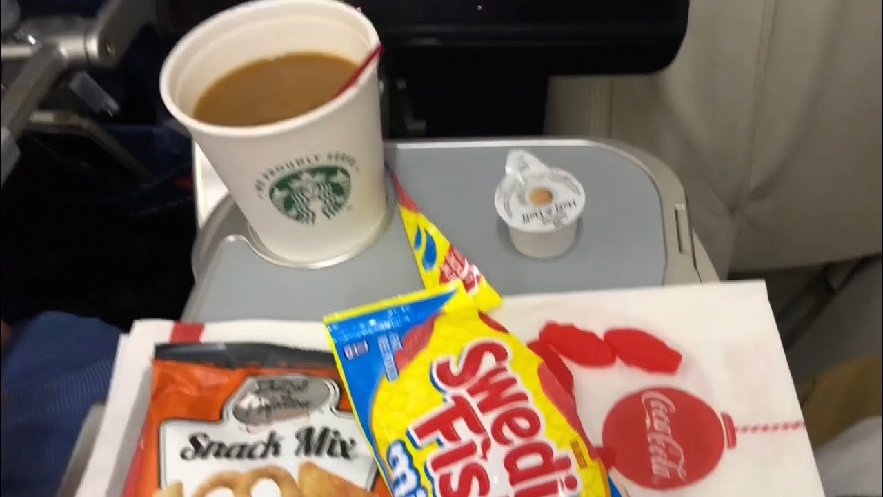 DELTA Comfort Plus review: JFK to LAX on the 757