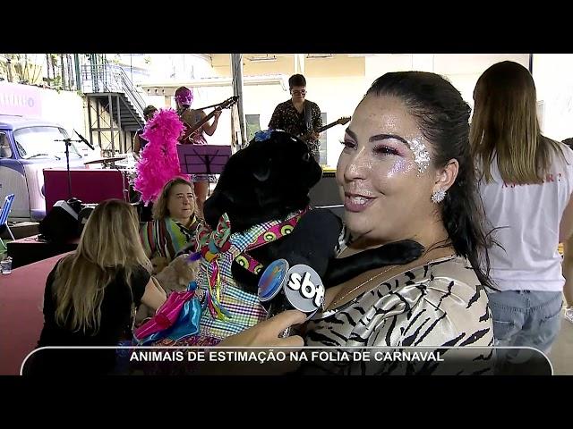 JMD (25/02/19) - Cães se fantasiam e entram na folia do carnaval