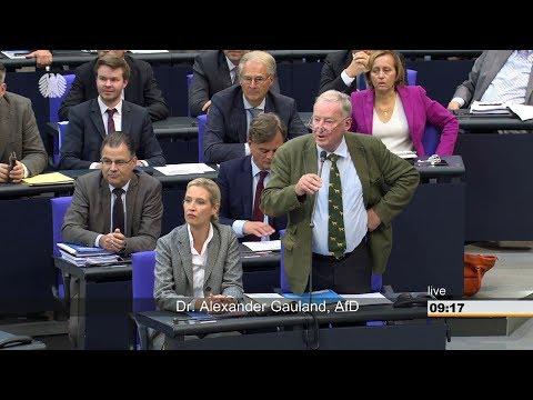Der Schlagabtausch und Tumulte im Bundestag 12.09.2018 - Bananenrepublik