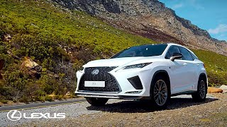 Introducing the New 2020 Lexus RX