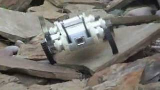 Boston Dynamics RHex