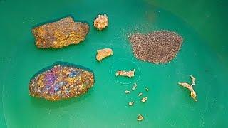 Como se ve el ORO en su Estado Natural (Piedra, Pepita y Polvo) Oro en Bruto