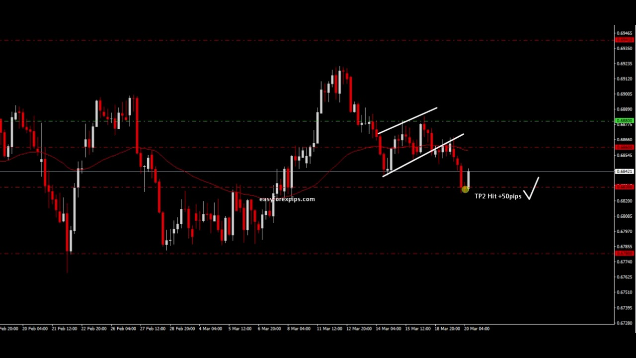 Easy forex pips