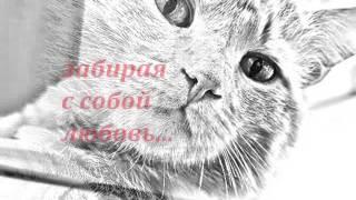 Как умирают кошки... посвящается моему коту,Кису..