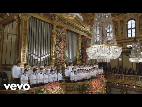 Mariss Jansons, Wiener Philharmoniker - Sängerslust, Polka française, Op. 328