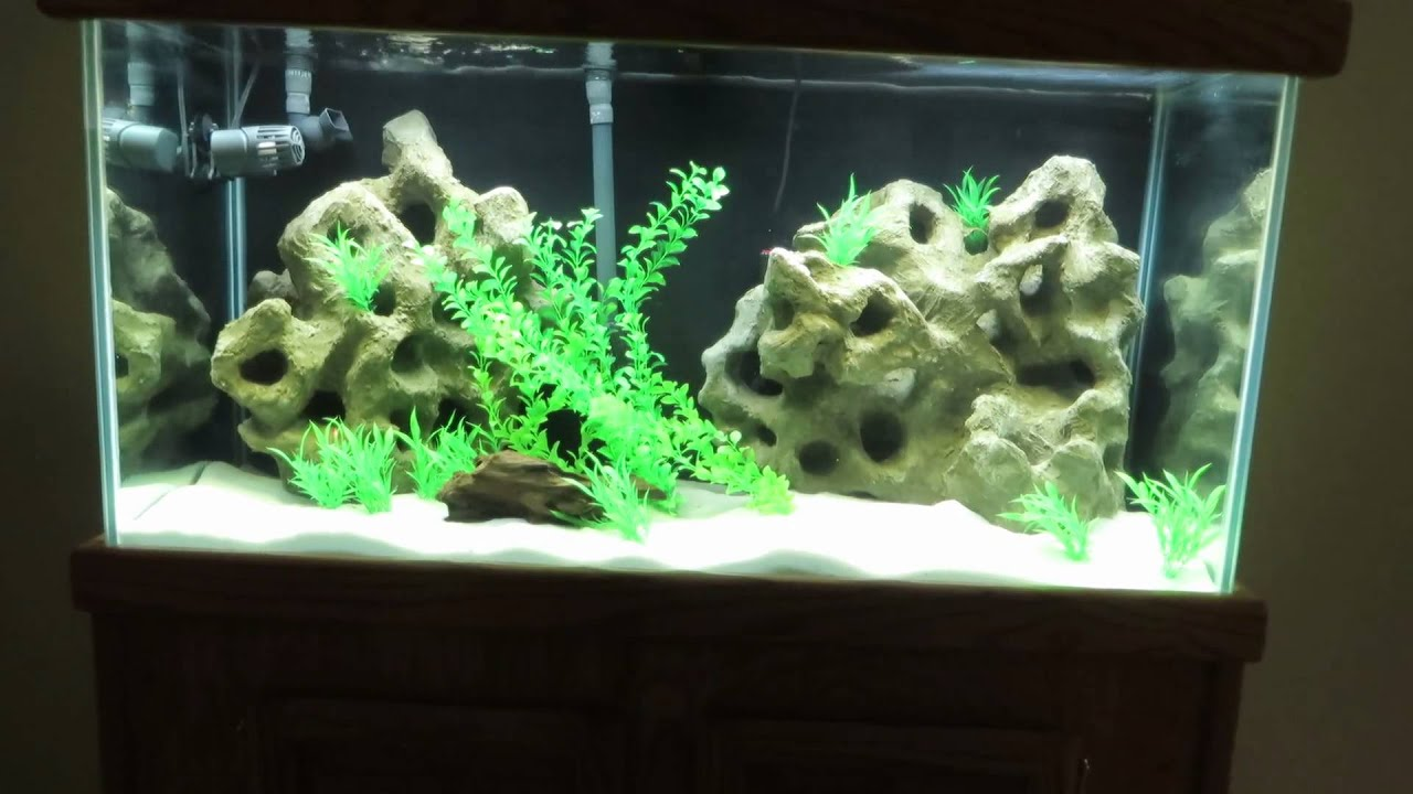 3d aquarium fish tank background feature rock - 3d Aquarium Fish Tank Background Feature Rock