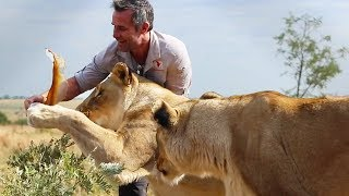 The bits you don't see… | The Lion Whisperer