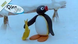 Pingu - Pingu en de vogelmoeder