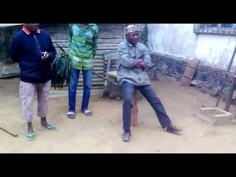 CONGO : À MOUYONDZI, LES CHATS ERRANTS DU CONGO LANCENT UN SOS