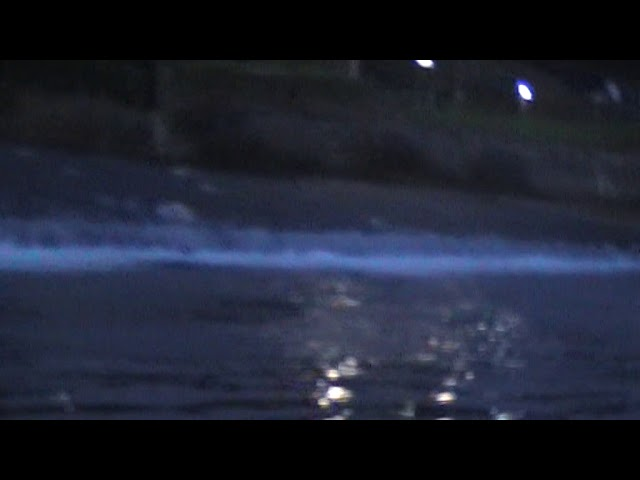 Salmon Ladder in Hawick - Short Clip