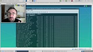 La Manjaro Linux Lolix LXQt est-elle le dernier espoir pour avoir LXQt et Manjaro ?