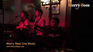 Merry Bees Live Music - The Trella Trio singing 'Stand By Me' by Oasis
