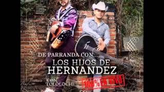 Los Hijos De Hernandez - En Vivo Con Tololoche (Disco Completo/Full Album) [2014][Descarga]