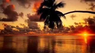 Hazırım Gelecek Baharlara - Vedat Sakman (Mayıs Şarkısı) Resimi
