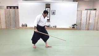 Aikido Weapons 4 Jo Basics & Handling