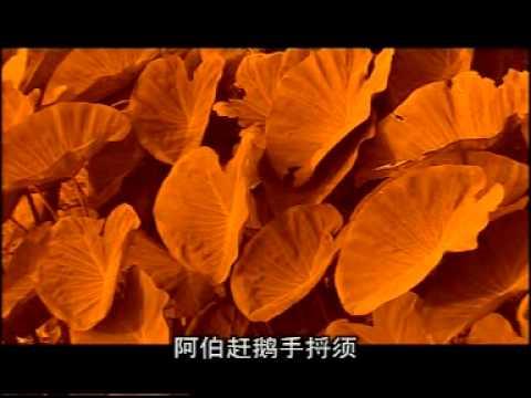 潮州歌: Liên Khúc Thiếu Nhi