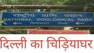 DELHI ZOO | दिल्ली का चिड़ियाघर