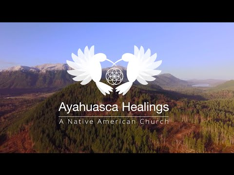 Ayahuasca Retreats in America - Week 2, It's Really Happening...