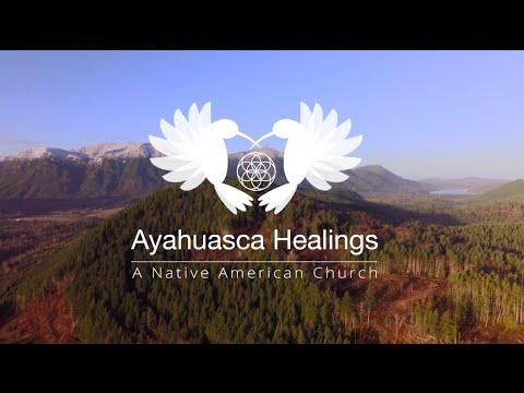 Ayahuasca Retreats in America - Week 2, It's Really Happening