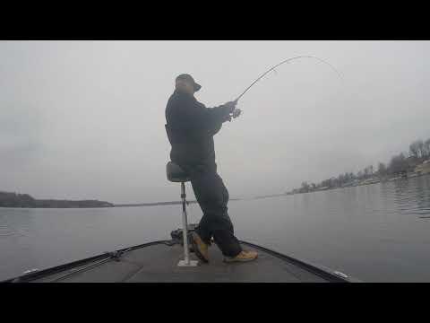 Jan 3, 2020 Lake Ontario Pickerel Fishing