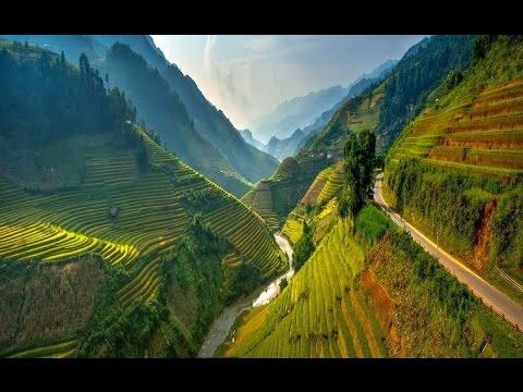 Sustainable vegetable farming system in Northwestern Vietnam - VTC10 Netviet - Sharing Vietnam